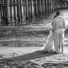 Santa Monica Love by Amy Cathrine-Rose - Wedding Bride & Groom ( anniversary, black and white, wedding, santa monica, santa monica pier )