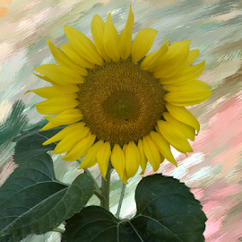 Sunflower by Nancy Brizendine - Digital Art Things ( green, textures, sunflower, bloom, yellow, leaves, painting, Hope )