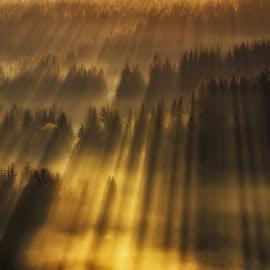 Laser SHOW by Pawel Uchorczak - Landscapes Mountains & Hills ( ~beskidy, laser, uchorczak, landscape, poland )