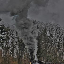 Best of Me  by Anna Tripodi - Transportation Trains ( love, beautiful, train, tracks, smoke,  )