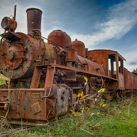Rusty train by Stjepan Jozepović - Transportation Trains ( hdr, train, rusty )