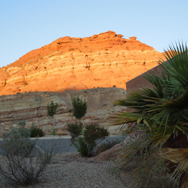 Bold and Beautiful by Dawn Schriebl Hartley - Landscapes Deserts