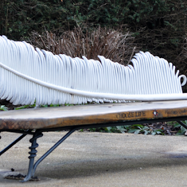 Feather Rest by Maxwell French - Artistic Objects Furniture ( park, bench, seat, east sussex, rest, hastings, feather )