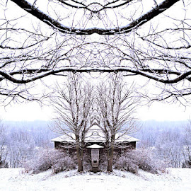 by Brittany  Wright - Novices Only Landscapes ( winter, canvas, snowy, photography )