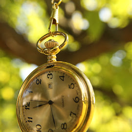 by Aires Spaethe - Artistic Objects Clothing & Accessories ( pocket watch, time, tree, watch, trees, close up, object )