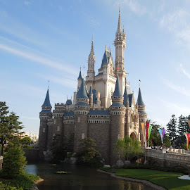 Disney Castle by Joy Ali - City,  Street & Park  Amusement Parks