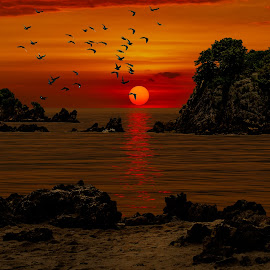 Sunset by Iambong Gee - Landscapes Sunsets & Sunrises ( clouds, sunset, islands, sea, birds )
