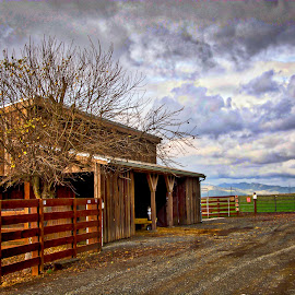 Rural Living by Diane Clontz - Novices Only Landscapes ( dark day, california, rural life, dark clouds, rush ranch )