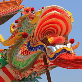 Dragon by Dirk Luus - Artistic Objects Other Objects ( dragon, festival, display, dance, chinese )