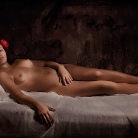 Olympia by Zdravko Gospodinov - Nudes & Boudoir Artistic Nude ( nude, girl, art, beautiful, light )