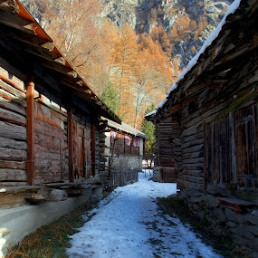 Vanishing Points Between Chalets by Joe Proctor - Buildings & Architecture Other Exteriors ( swiss, point, snow, vanishing, switzerland, chalet, evolve, alps )