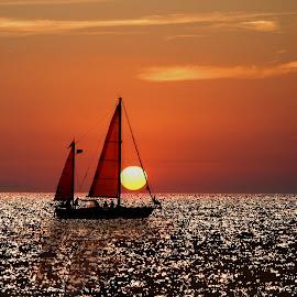 sailboat at sunset (Gallipoli Italy) by Fernando Ale - Transportation Boats (  )