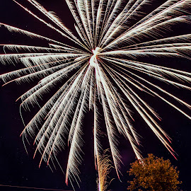 by Mike Gardner - Abstract Fire & Fireworks