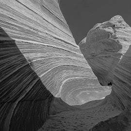 Rock stratification in Utah by Tyrell Heaton - Nature Up Close Rock & Stone ( black and white, nature up close, rock )