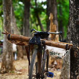 Basket on the bicycle by Taufan F Adryan - Transportation Bicycles