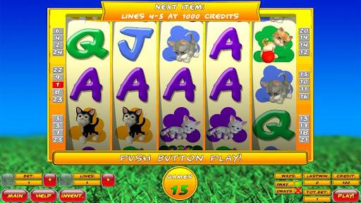 Slot Tales Crazy Kitten FREE