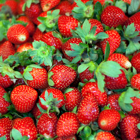 Philippine Strawberries by Noel Angeles - Food & Drink Fruits & Vegetables ( fruits, food photography )
