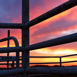 Cattle Pens 3 by Cheryl Petretti - Novices Only Landscapes ( mariposa, sunset, cattle pens, cowboy up!, fire in the sky )