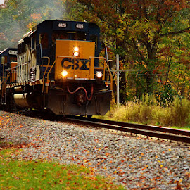 Fall Colors by Kourtney Monroe - Transportation Trains ( fall, color, colorful, nature )