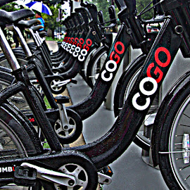 CoGo by Penny VanAtta - Transportation Bicycles ( borrowing, bikes, transportation, rental )