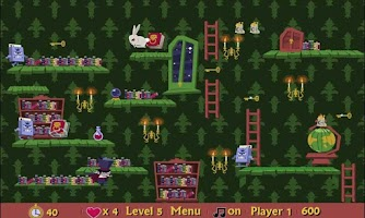 Screenshot of Magic Rescue