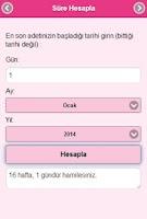 Screenshot of Hamilelik Rehberi