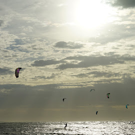 Kite Surfers by Jefferson Welsh - Sports & Fitness Watersports