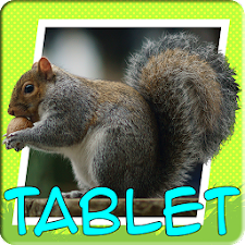 Play & Learn: Animals Tablet