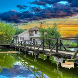 On The Lake by Siniša Biljan - Landscapes Waterscapes