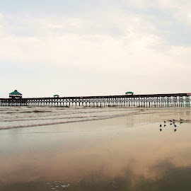 Endless Pier by Joy Weaver Teems - Landscapes Beaches