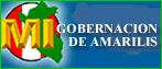 GOBERNACION DE AMARILIS