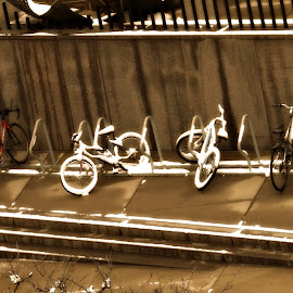 Snow Bikes by Dawn Moder - Transportation Bicycles ( bicycles, park, snow, wet )