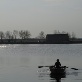 Rowing On The River IMG_20846.JPG