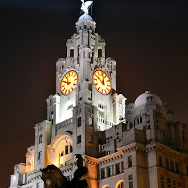 Liver Building, Liverpool by Tom Gordon - Buildings & Architecture Public & Historical ( statue, clock, liverpool, liver bird, night )