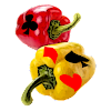 Pepper (Bid Euchre)