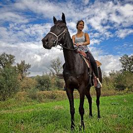par by Dunja Kolar - Animals Horses