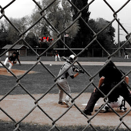 SLC Boys of Summer  by Jase - Sports & Fitness Baseball ( selective color, pwc )