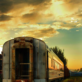 by Ydoya Rodriguez - Transportation Trains ( sunset, railroad, train, transportation, trains,  )
