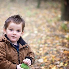 catch by Melissa Marie Gomersall - Babies & Children Toddlers ( autumn, background, blur, toddler, tennis, cute )