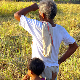 Grandfather and grandchild in crop field by Asif Bora - People Family