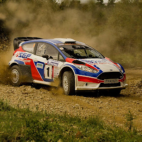 Rally Car by Ron Jnr - Transportation Automobiles ( car, yorkshire rally, ford car, speed, grass, green, road dust, gravel, dalby forest, rally car, rally, lose gravel, yorkshire, ford focus, dust, flying stones, trees, stones )