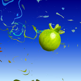 The Green Tomato by Marion Metz - Digital Art Abstract ( abstract, sky, tomato, green, new zealand )