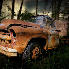 Derelict Truck by Tracy Munson - Transportation Automobiles ( distressed, old, truck, vintage, texture, vehicle, farm equipment, retro, forest, rural, aged, grunge, derelict, rust, antique, abandoned, decay, rotting )