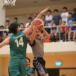 IVP-02 by Joseph Lee - Sports & Fitness Basketball ( basketball, ivp, fitness, varsity, sports )