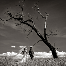by Lindsay James - Wedding Bride & Groom ( love, b&w, wedding, bride, groom, people )