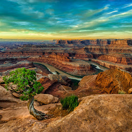 Dead Horse Point by Rusty Parkhurst - Landscapes Sunsets & Sunrises ( desert, canyonlands, utah, dead horse point state park, southwest, sunrise, landscape )