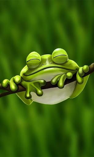 【免費個人化App】Cute Froggy Pro Live Wallpaper-APP點子
