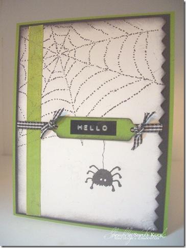 Hello Spider_SaK