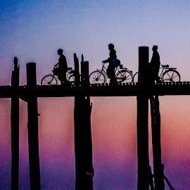 The cyclists by Khun Myo Than Htun - Transportation Bicycles ( sky, u bein bridge, cyclists, sunset, bridge )