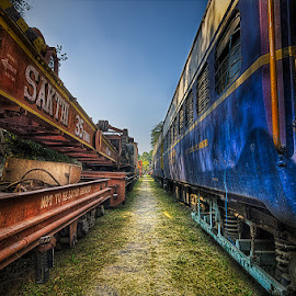 Train vs Crain by Rajneesh Photos - Transportation Trains ( crain, train )